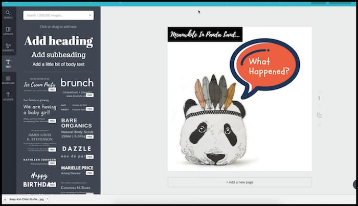 Panda Pillow Facebook Retargeting Creative