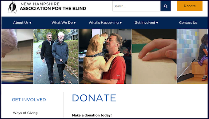 Website Make Money With Donations