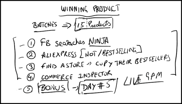 Winning Shopify Store Product Doodle
